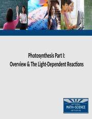 01 Photosynthesis Intro and Light Dependent Reactions.pptx