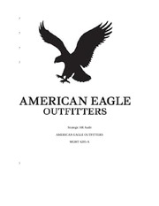 Final Audit Paper on American Eagle