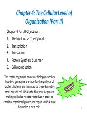 Chapter 4- Cellular Level of Organization