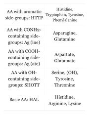 essential amino acids mnemonic wwwpixsharkcom images