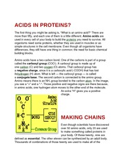 Acids in Proteins
