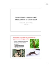 Lec 25 Gene Culture Coevolution