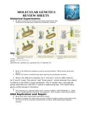 Copy of Molecular Genetics REVIEW SHEET (Autosaved)