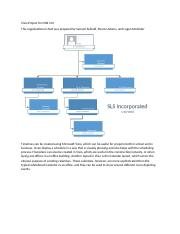 CISB 101 004 05 Visio Project Seibold Adams McAlister.docx