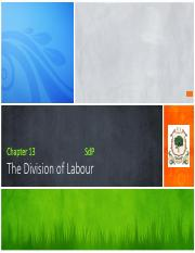 Chapter 13 - The division of labour