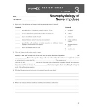 physioex 11 review sheet Time: 11022012 author: biomoni physioex review sheet exercise 6 physioex 90 review sheet exercise 5 questions i noticed that several people asked for these questions and answers, so i.