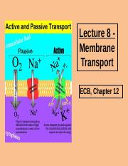 2201 Lecture 8 Membrane Transport 2014.ppt