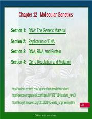 DNA & Protein Synthesis Lecture.ppt