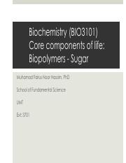 Slide 3 Biopolymer Sugar I