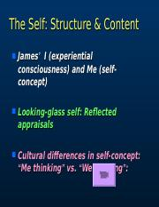 psychology a concise introduction 5th edition chapter 5
