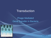 28 - Transduction