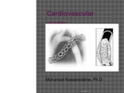 Cardiovascular_stents