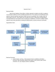 242844195-Chapter-1-Capstone-Case-New-Century-Wellness-Group.docx