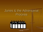 Juries & the Adversarial Process 2