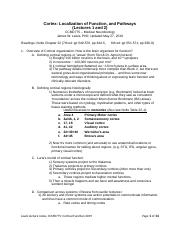 LectureNotes_Lewis_CCMD775_CorticalFunction_190527a.docx