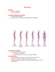 Spine Injuries