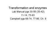 L3 - Lab 3 - Transformation & Enzymes