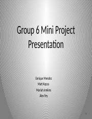 Group 6 Mini Project Presentation.pptx