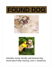 found dog flyer Found dog attach a photo of the found pet here print the information at the right and below use this as your original to make copies breed/type: age.