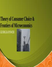 ECO 365_Theory of Consumer Choice_Lawanna Wesby