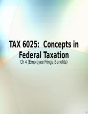 TAX 6025 Exclusions 5 Employee Fringe