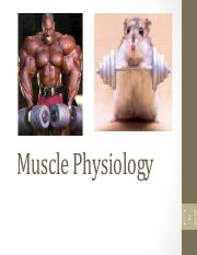 NPB+101+-+Lecture+Muscle+1+-+Spring+2016.pdf