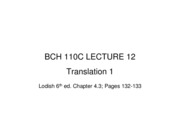 110C LEC 12 Translation 1