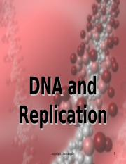 DNA replication1 RED 4