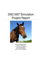 Simulation project report (DO NOT TOUCH)