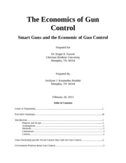 Formal Report on the Economics of Gun Control