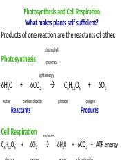 Photosynthesis SBG .ppt