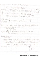 Energy and Environment ClassNotes2