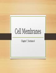 Cell_Membranes.pptx