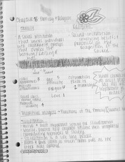 chapter 13 family and religion notes