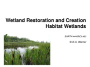 2015-Restoration, Habitat Wetlands-LEARN.pdf