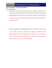 GB_1613_L15_Photosynthesis.docx