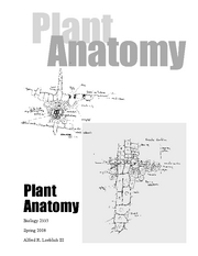 Plant Anatomy Textbook