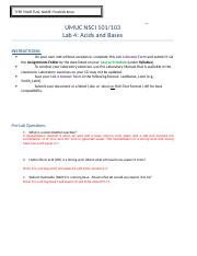 Lab-4-Report-Form.doc