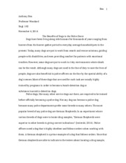 Final Essay - DRAFT