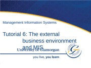 The External Business Environment and MIS