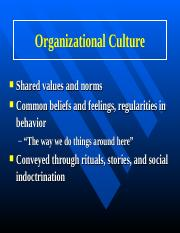 the values beliefs and norms of an organization nursing essay To understand how culture affects leadership,  being able to define the culture of an organization will help you to work  a pattern of shared values, norms,.