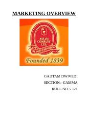 gautam MARKETING.docx