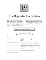 Reproductive System Study Guide