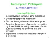 17 - Transcription (Prokaryotes); E.coli Polymerase & Promoters