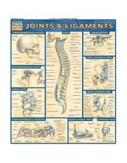 Joints and Ligament Quick Study