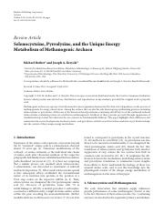 selenocysteine,_pyrrolysine_and_unique_energy_metabolism_of_methanogenic_archaea