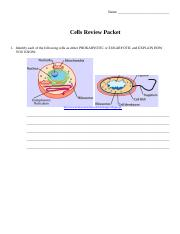 Cells Review Packet.doc