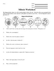 Mitosis Worksheet Pdf Name Biology Date Period Mitosis Worksheet The Diagram Below Shows Six Cells In Various Phases Of The Cell Cycle Note The Cells Course Hero