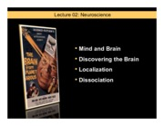 Lecture 2- Neuroscience