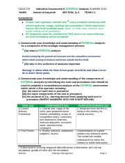 Individual Assessment II SU16 (1).docx ami.docx